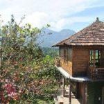 Enjoy an unforgettable family get together at Masinagudi resorts.